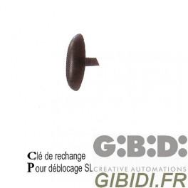 CLE DE RECHANGE POUR DEBLOCAGE SL